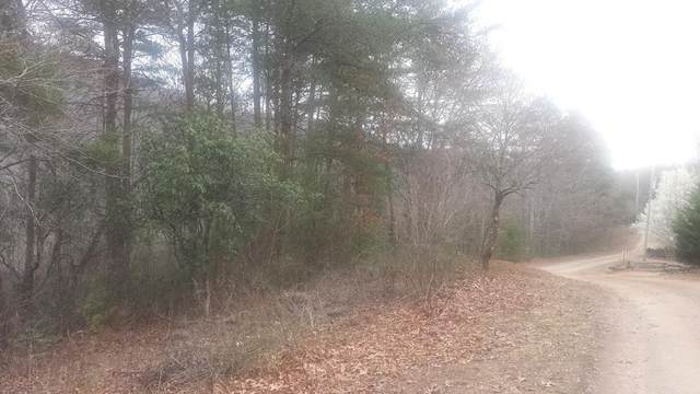 Lot #24 Mountain Top Rd, MARBLE, NC 28905 (MLS #131179) :: Old Town Brokers