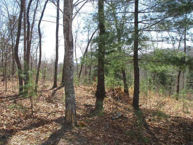 Lot 34 Burger Road  And Surrey Trail, MURPHY, NC 28906 (MLS #131370) :: Old Town Brokers