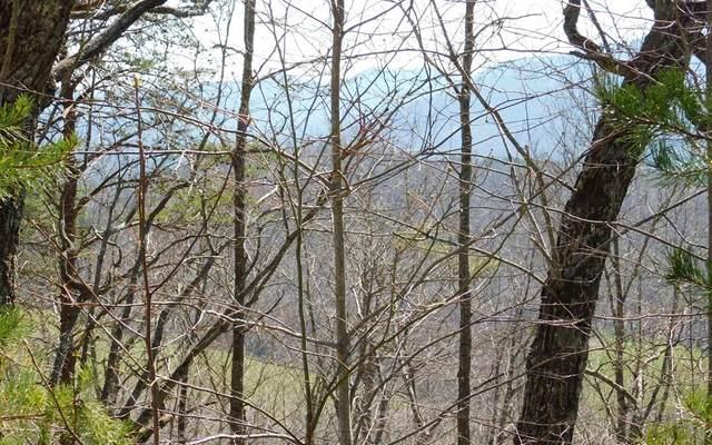 Lot 5 Deer Valley, WARNE, NC 28909 (MLS #131508) :: Old Town Brokers