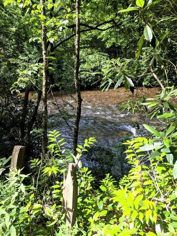 Lot 2 Grouse Mountain, HAYESVILLE, NC 28904 (MLS #132023) :: Old Town Brokers