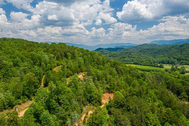 00 Maltby Rd, MARBLE, NC 28905 (MLS #132304) :: Old Town Brokers