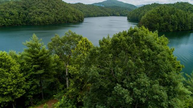 000 Wilderness Lake Circle, MURPHY, NC 28906 (MLS #132320) :: Old Town Brokers