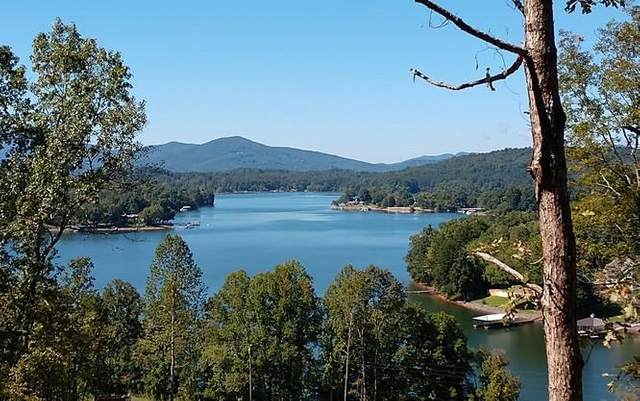 4 Cottages @ Chatuge, HAYESVILLE, NC 28904 (MLS #132675) :: Old Town Brokers
