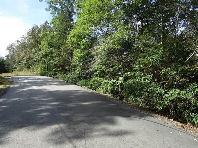 35 Maggie Lane, MURPHY, NC 28906 (MLS #132933) :: Old Town Brokers