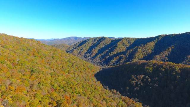 00 Squally Road, ROBBINSVILLE, NC 28771 (MLS #133189) :: Old Town Brokers