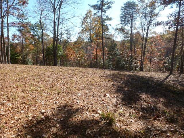 Lot 1 Thundering Hill, MURPHY, NC 28906 (MLS #133193) :: Old Town Brokers