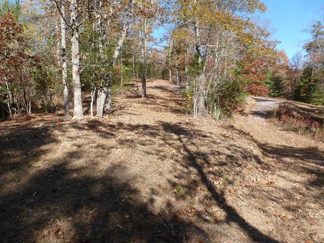Lot 2 Thundering Hill, MURPHY, NC 28906 (MLS #133194) :: Old Town Brokers