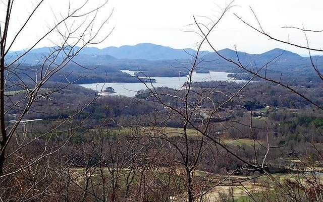 65M Mountain Harbour, HAYESVILLE, NC 28904 (MLS #133332) :: Old Town Brokers