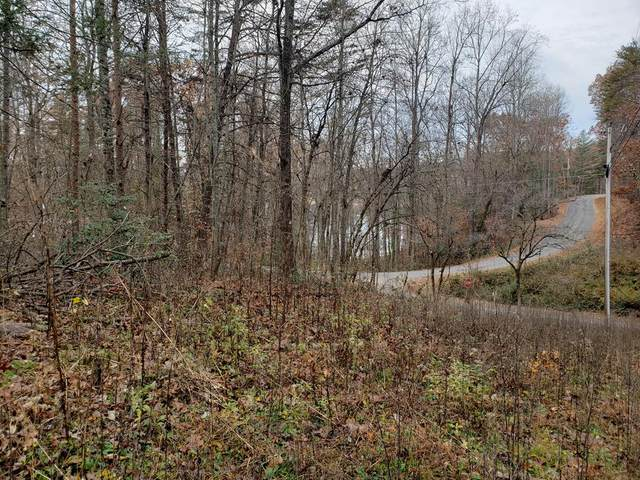 138/140 Woodland Ln, HAYESVILLE, NC 28904 (MLS #133409) :: Old Town Brokers