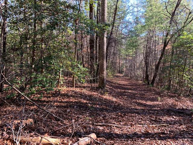 000 Tranquil Valley Lane, MURPHY, NC 28906 (MLS #133466) :: Old Town Brokers