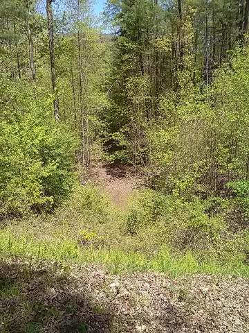 18 Quiet Mountain Trail, MURPHY, NC 28906 (MLS #133543) :: Old Town Brokers
