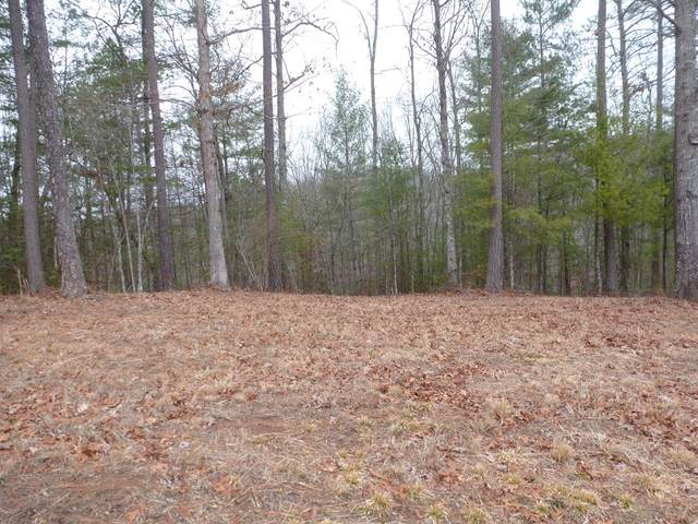 Lot 40 Majestic Mountain Trail, MURPHY, NC 28906 (MLS #133627) :: Old Town Brokers