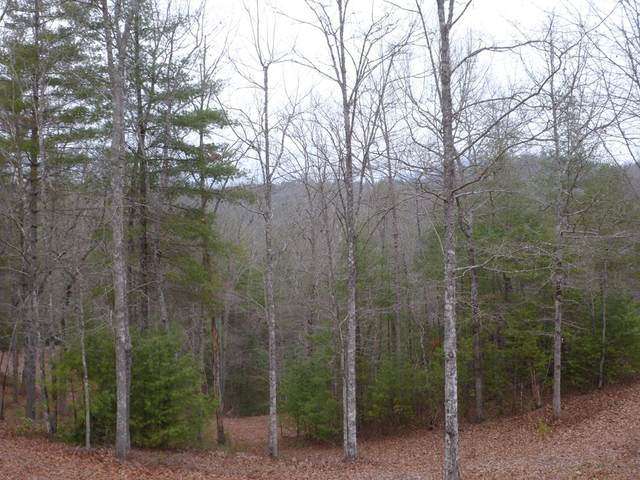 Lot 44 Majestic Mountain Tr, MURPHY, NC 28906 (MLS #133632) :: Old Town Brokers