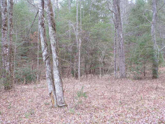 Lot 55 Thundering Hill, MURPHY, NC 28906 (MLS #133633) :: Old Town Brokers