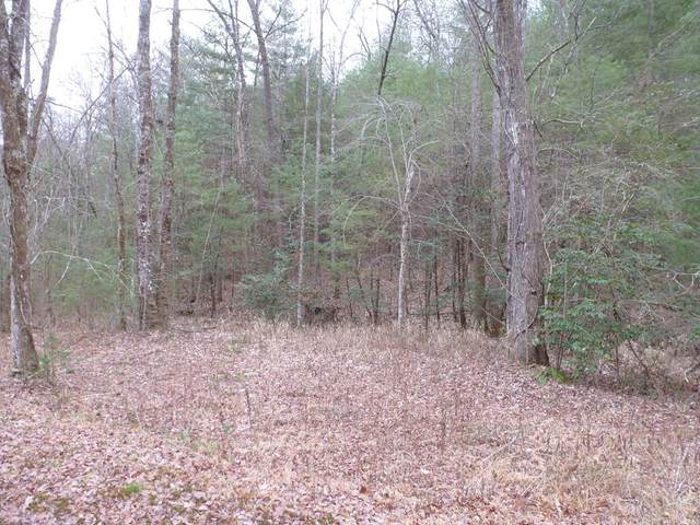 Lot 56 Thundering Hill, MURPHY, NC 28906 (MLS #133635) :: Old Town Brokers