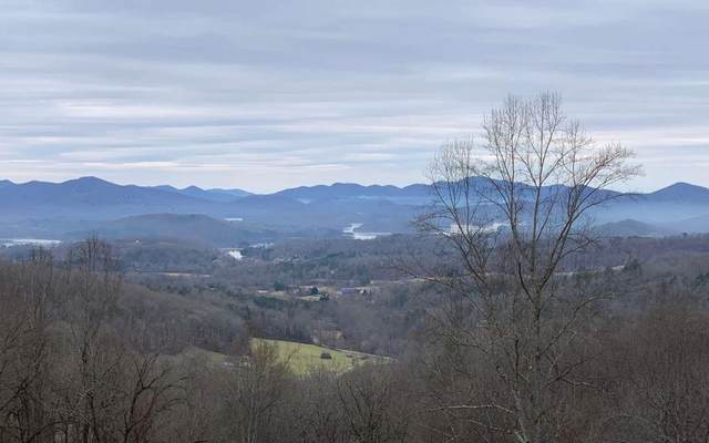 Lot 46A High Meadows, HAYESVILLE, NC 28904 (MLS #133649) :: Old Town Brokers