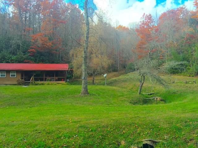 1094 Fairview Lane, TOPTON, NC 28781 (MLS #133684) :: Old Town Brokers