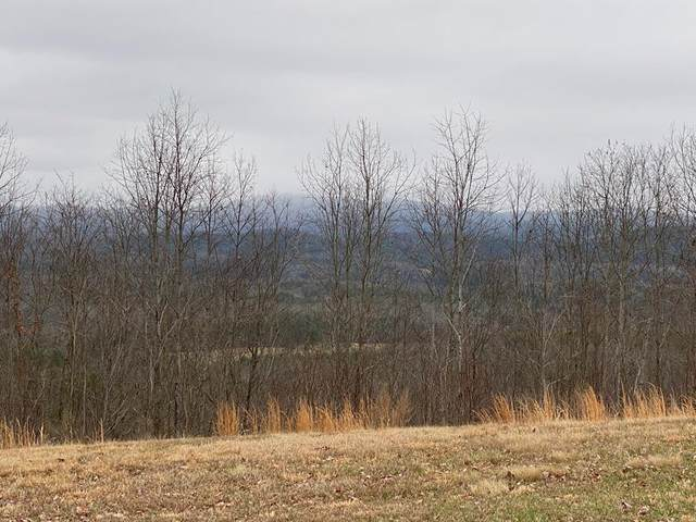 Lot 35 Great Sky Trail, MURPHY, NC 28906 (MLS #133697) :: Old Town Brokers