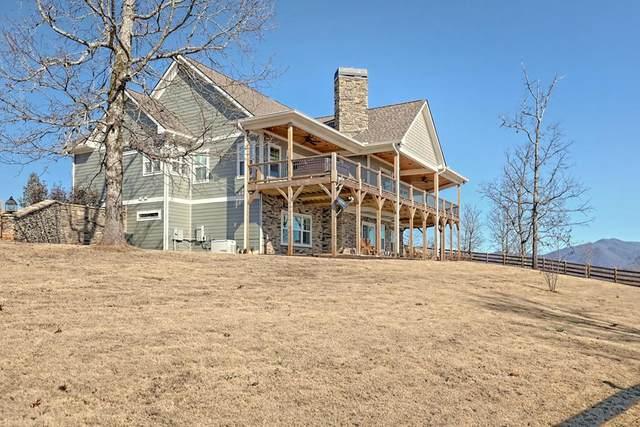 393 Jack Groves Ln, HAYESVILLE, NC 28904 (MLS #133784) :: Old Town Brokers