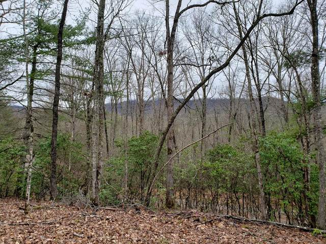 Lot 65 Poplar Lane, WARNE, NC 28909 (MLS #133889) :: Old Town Brokers