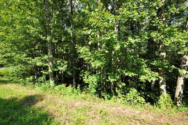 Lot 22 Summer Cove Road, BLAIRSVILLE, GA 30512 (MLS #134166) :: Old Town Brokers