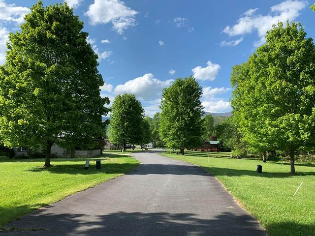 Lot 12 Lazy Bear Trail, ANDREWS, NC 28901 (MLS #134218) :: Old Town Brokers