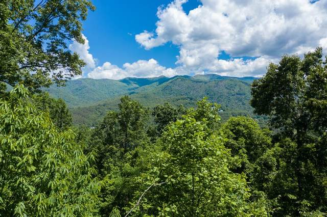 TBD Old Hwy 64 E, HAYESVILLE, NC 28904 (MLS #134295) :: Old Town Brokers