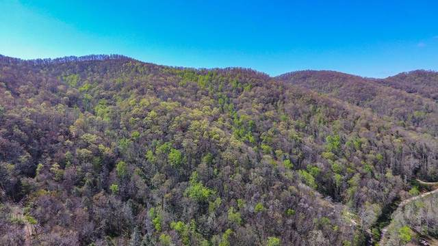 4.17 Porterfield Gap Rd, ROBBINSVILLE, NC 28901 (MLS #134426) :: Old Town Brokers