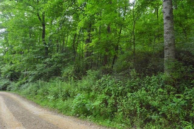 14-16 Walnut Branch Road, ROBBINSVILLE, NC 28771 (MLS #134522) :: Old Town Brokers