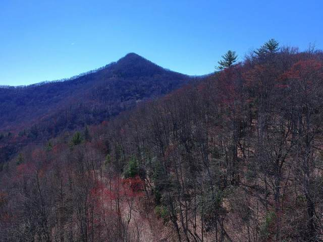 00 Little Buffalo/Straight Branch, ROBBINSVILLE, NC 28771 (MLS #134791) :: Old Town Brokers