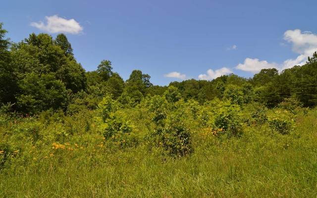 13+ Acre Matheson Cove Road, HAYESVILLE, NC 28904 (MLS #134818) :: Old Town Brokers