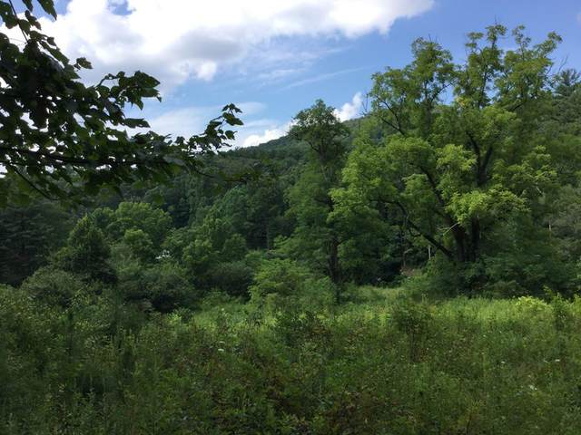 122AC Candy Mountain Road, MURPHY, NC 28906 (MLS #134876) :: Old Town Brokers