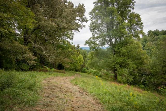 00 Candy Mountain Road, MURPHY, NC 28906 (MLS #135240) :: Old Town Brokers