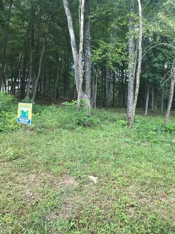 Lot 15 Mountain Vista Lane, TOPTON, NC 28781 (MLS #135262) :: Old Town Brokers