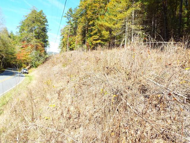 TBD Fires Creek Road, HAYESVILLE, NC 28904 (MLS #136416) :: Old Town Brokers