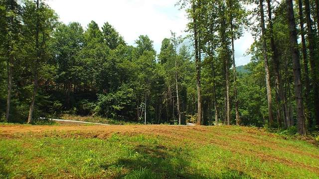 TBD West Buffalo Road, ROBBINSVILLE, NC 28771 (MLS #136443) :: Old Town Brokers