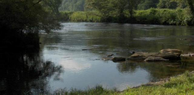 9 ac. Theron Mccray Rd, HAYESVILLE, NC 28904 (MLS #136444) :: Old Town Brokers