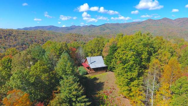 903 Sky Harbour Trace, ANDREWS, NC 28901 (MLS #136461) :: Old Town Brokers