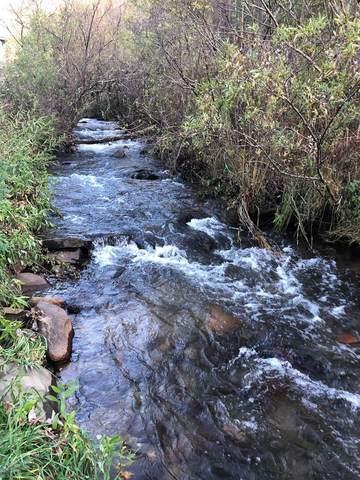 TBD Otter Creek Road, NANTAHALA, NC 28781 (MLS #136509) :: Old Town Brokers