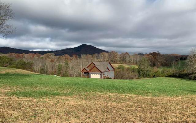 Lot 87 The Preserves, YOUNG HARRIS, GA 30582 (MLS #136602) :: Old Town Brokers