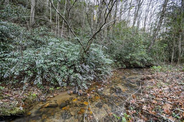 11.21 AC Flea Mountain Road, MURPHY, NC 28906 (MLS #136624) :: Old Town Brokers