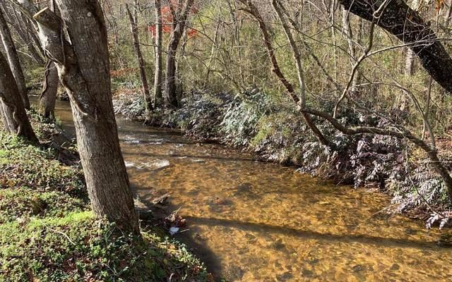 Lot 16 Ivy Log Creek Est, BLAIRSVILLE, GA 30512 (MLS #136626) :: Old Town Brokers