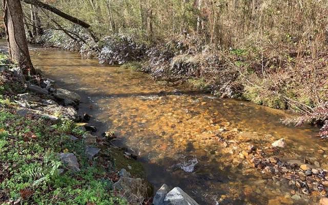 Lot 17 Ivy Log Creek Estates, BLAIRSVILLE, GA 30512 (MLS #136631) :: Old Town Brokers
