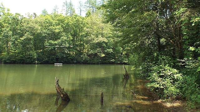 B West Buffalo, ROBBINSVILLE, NC 28771 (MLS #136770) :: Old Town Brokers
