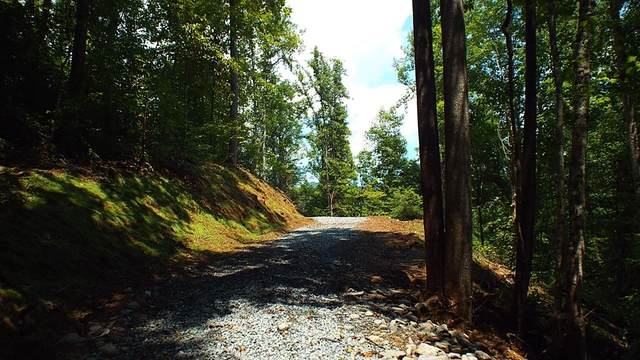 Tract D West Buffalo Road, ROBBINSVILLE, NC 28771 (MLS #136782) :: Old Town Brokers