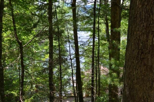 L-7-93 Thunderbird Trail, ROBBINSVILLE, NC 28771 (MLS #136783) :: Old Town Brokers