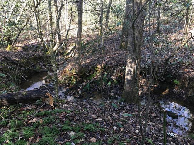 161 Nottely Woods Drive E, BLAIRSVILLE, GA 30512 (MLS #136863) :: Old Town Brokers