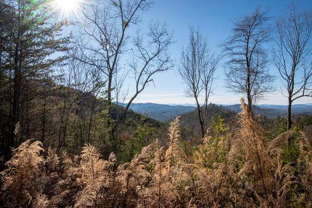 Lt 36/39 Crested Eagle, MURPHY, NC 28906 (MLS #136931) :: Old Town Brokers