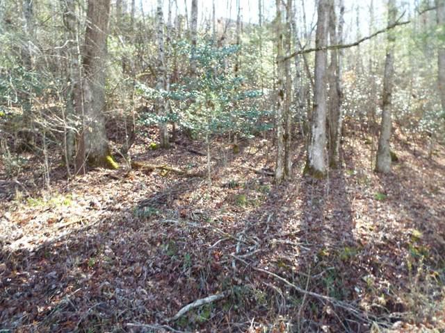 TBD Talc Mine, MURPHY, NC 28906 (MLS #136941) :: Old Town Brokers
