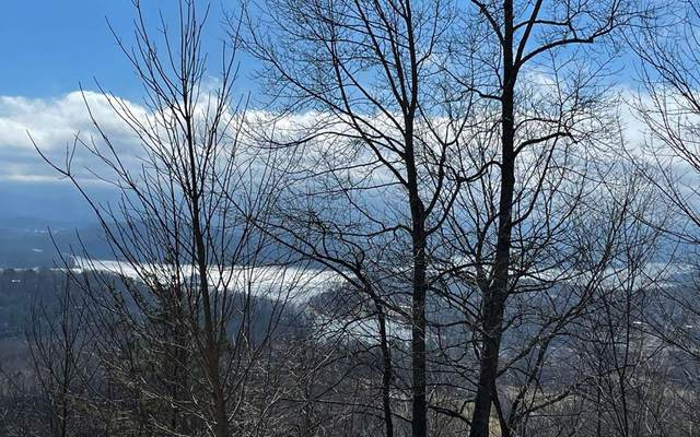 Lot 35B Mtn Harbour, HAYESVILLE, NC 28904 (MLS #137193) :: Old Town Brokers